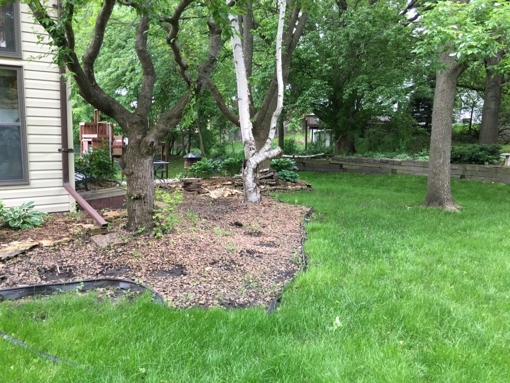 Landscape FIX Apple Valley BEFORE