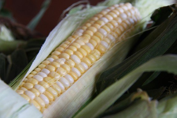 Pahl's Homegrown Sweet Corn